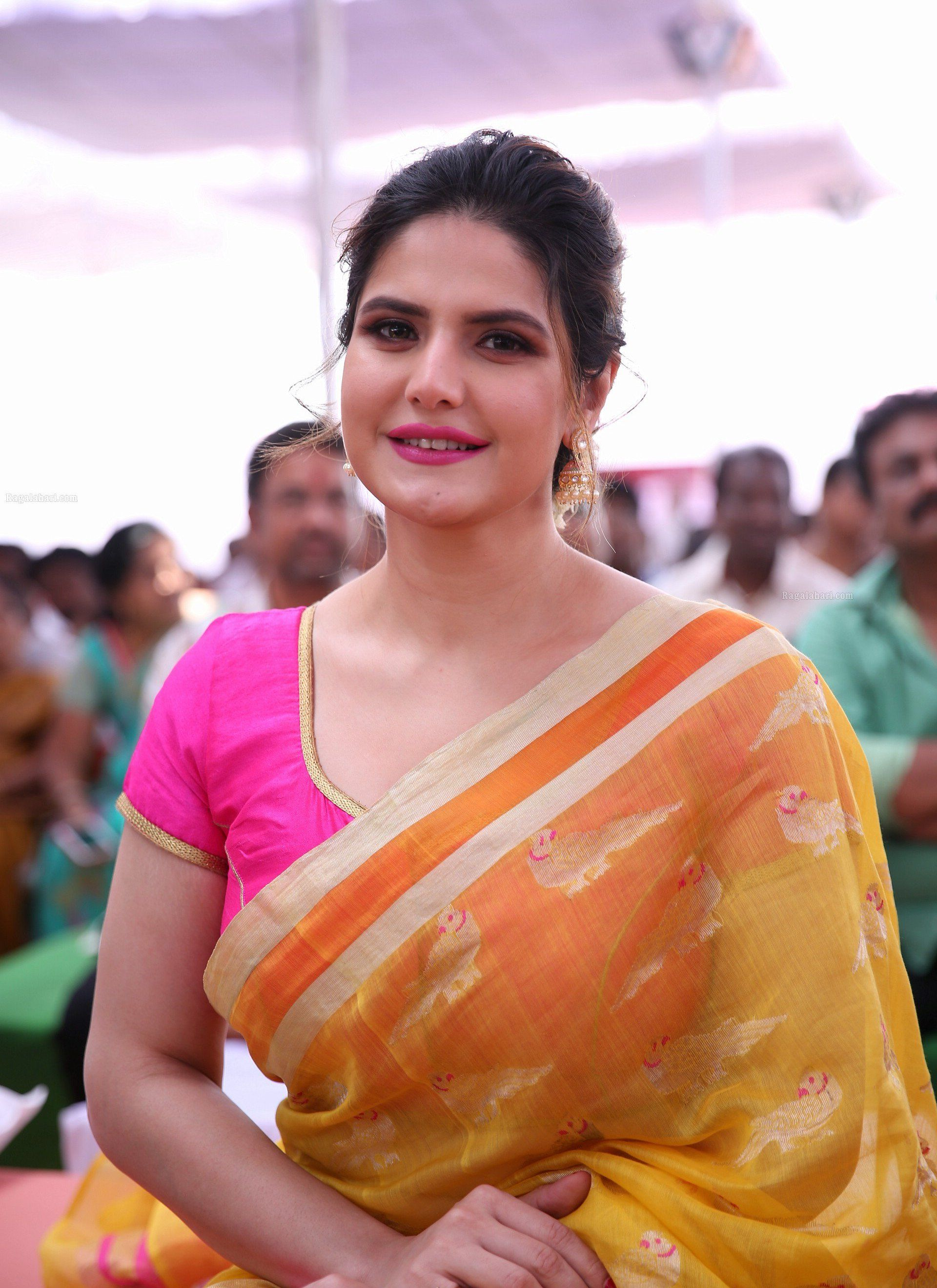 Zarine Khan Beautiful Images in Saree Actresses Zarine khan 1920x2638