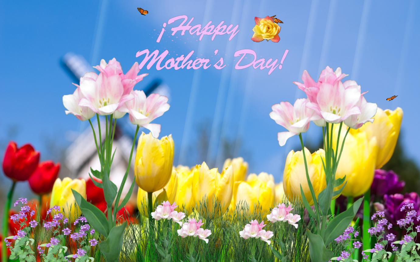 Mothers Day 2013 HD Wallpapers Download for Mothers Day Special 1381x862