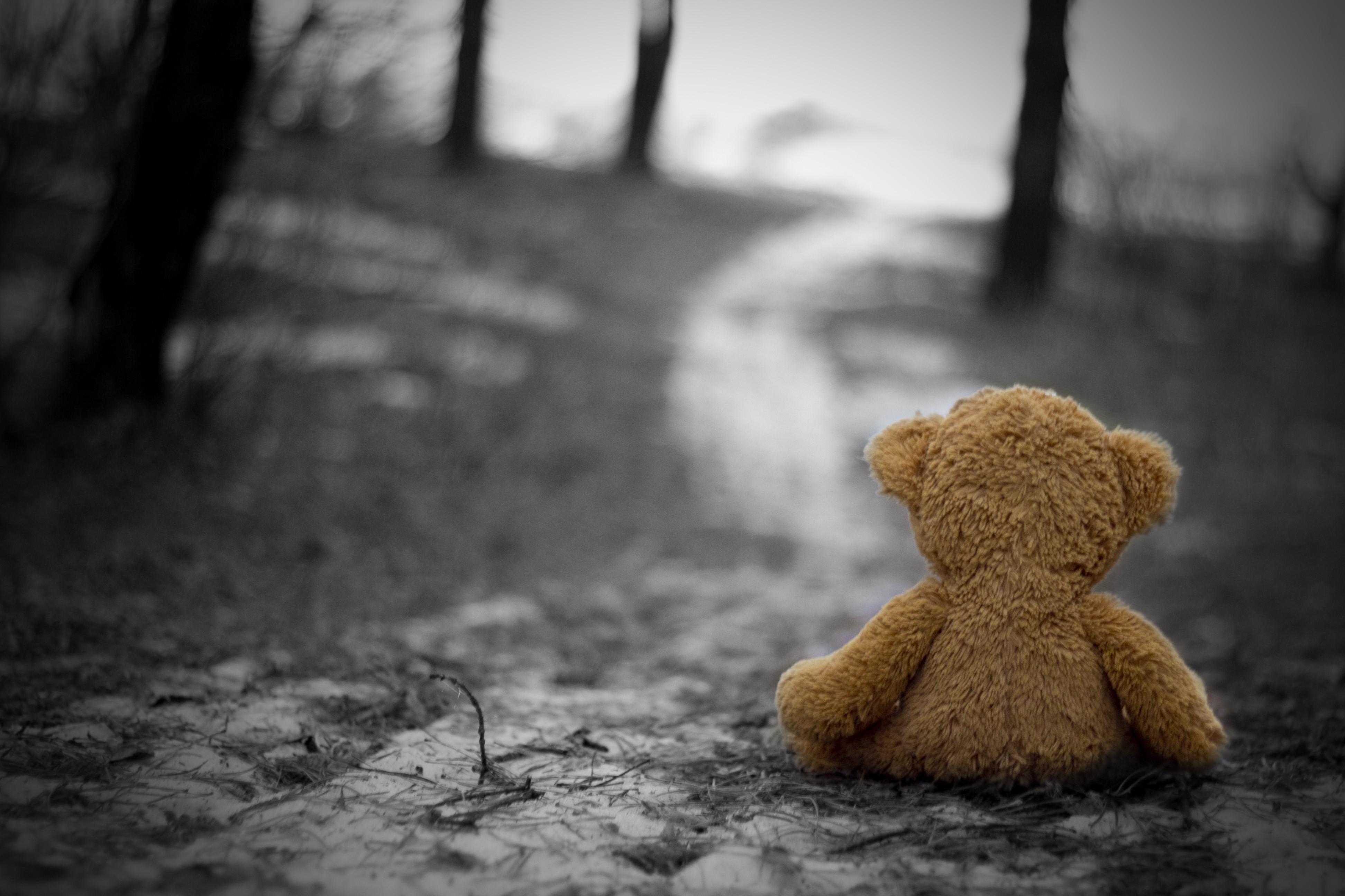 autumn cold toys lonely nostalgia sadness grief 3888x2592
