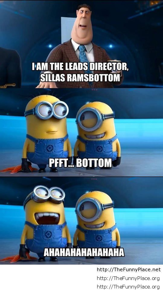 Funny Minions Joke Despicable Me TheFunnyPlace 540x960