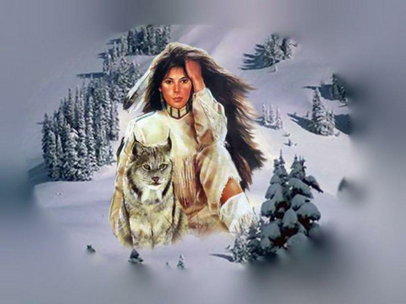 brush feather Native American Woman and Wolf Abstract Fantasy HD 800x600