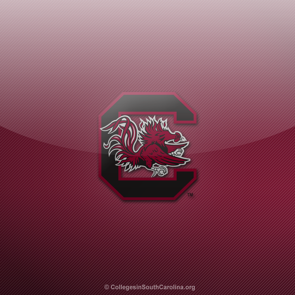 South Carolina Gamecocks 1024x1024