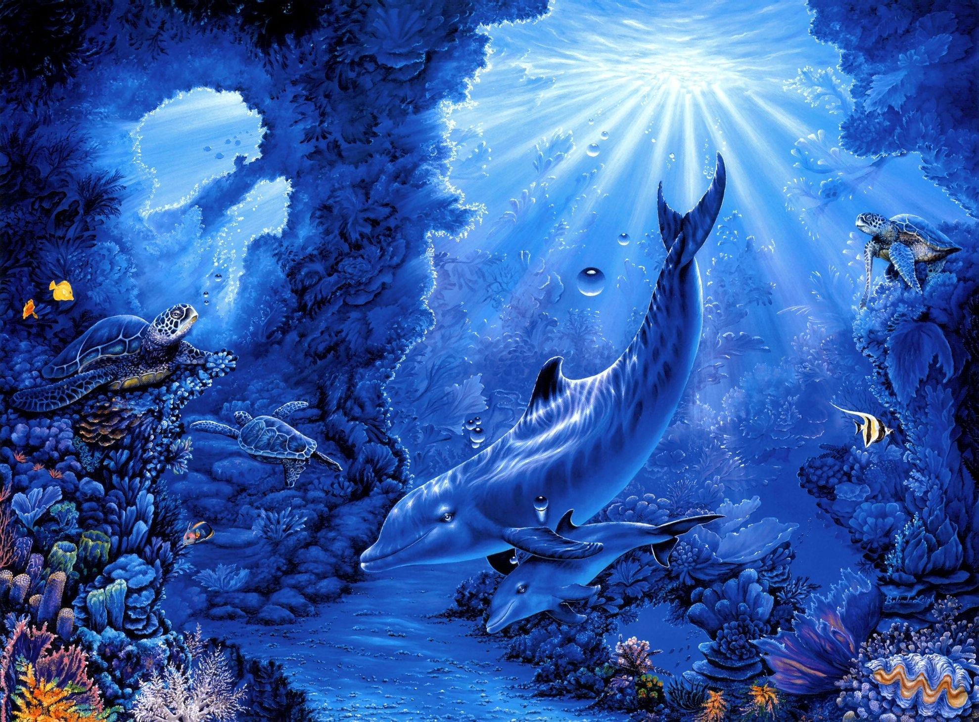 ... rays art dolphins dolphin sea ocean underwater wallpaper background