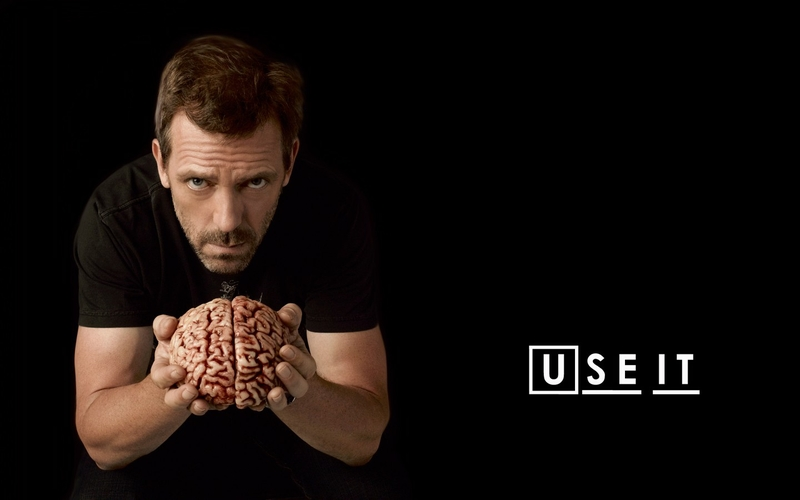 dr house brain house md 1440x900 wallpaper Architecture Houses HD 800x500