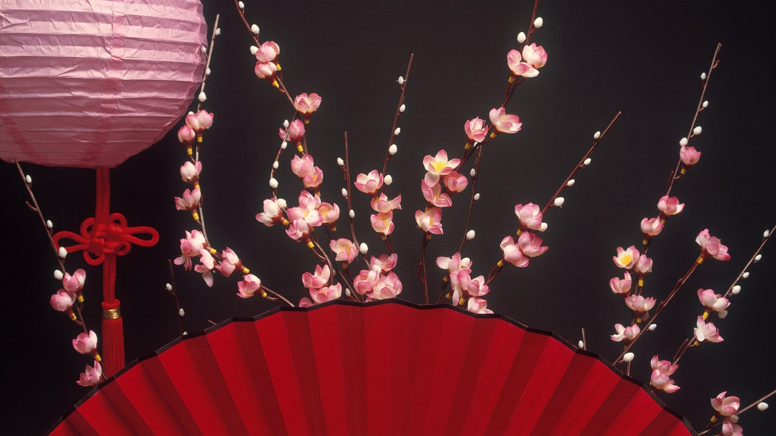 Chinese New Year 2014 Desktop Background   Wallpaper High 2560x1440