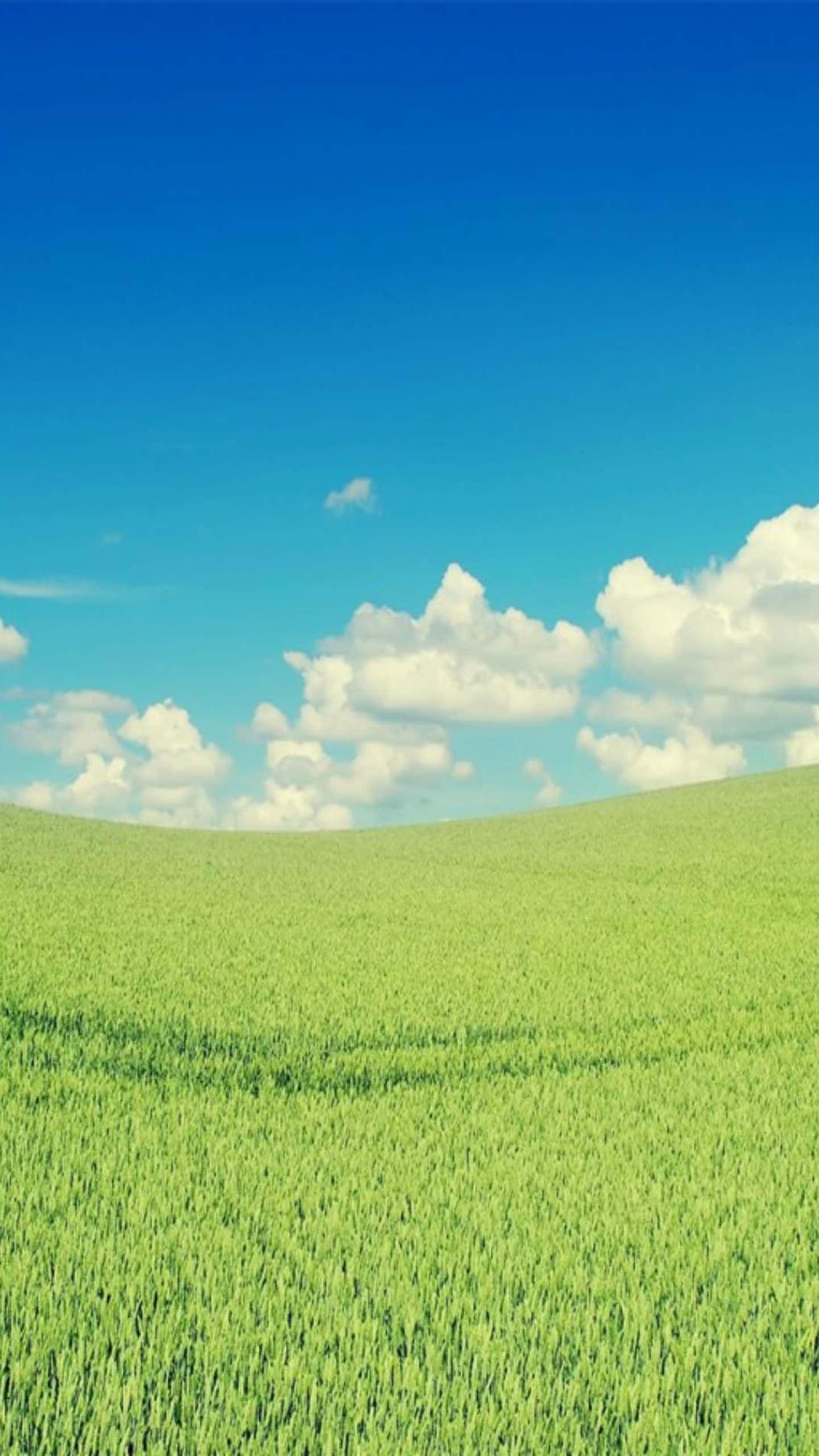 cloud sky green wallpapersc SmartPhone 1440x2560