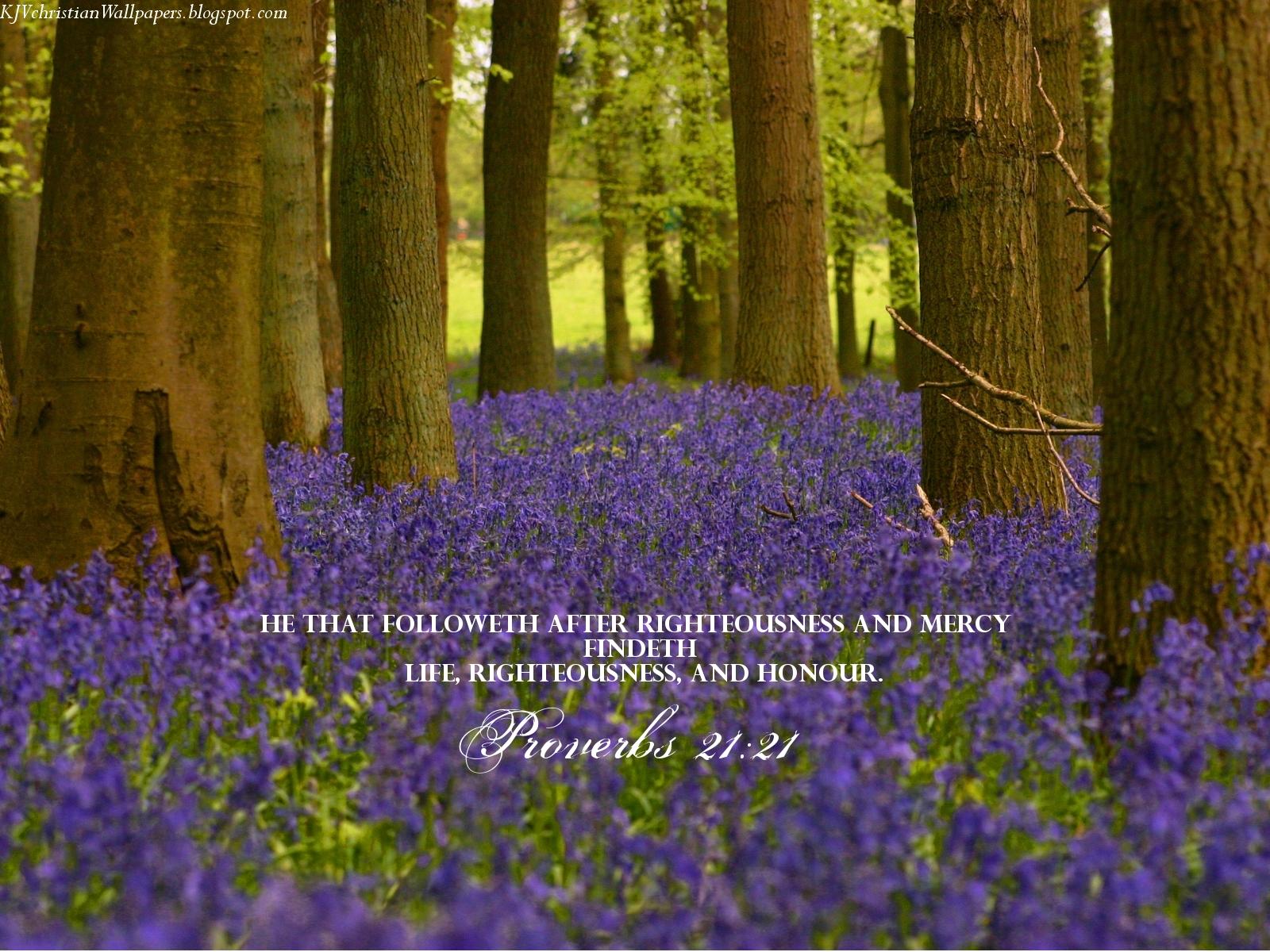 King James KJB versed Christian Wallpaper Proverbs 2121 1600x1200
