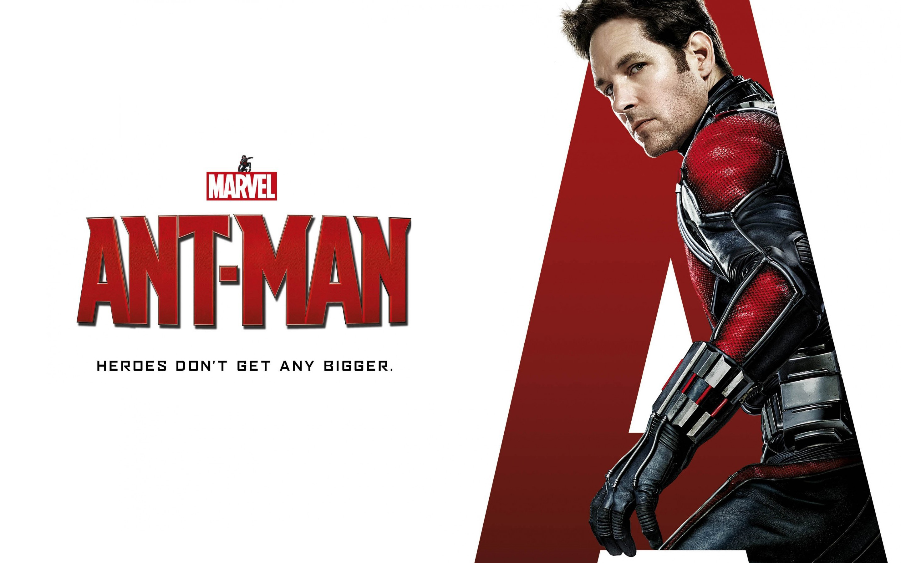 Paul Rudd Ant Man Wallpapers HD Wallpapers 2880x1800