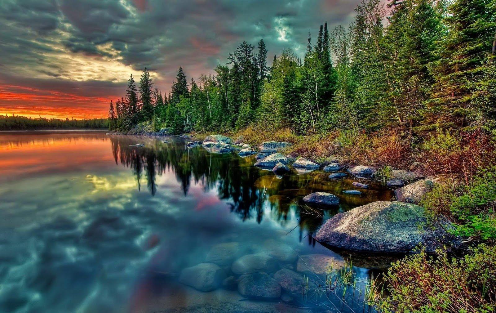 Hd Nature Wallpapers 1080p - WallpaperSafari