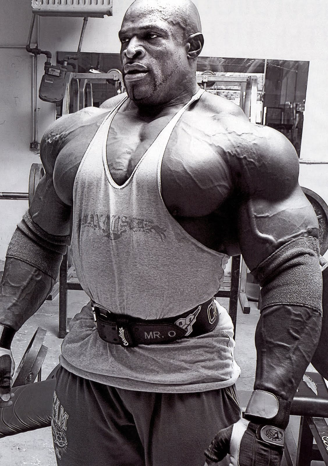 Muscle Wallpapers Mr Olympia Ronnie coleman 1127x1600