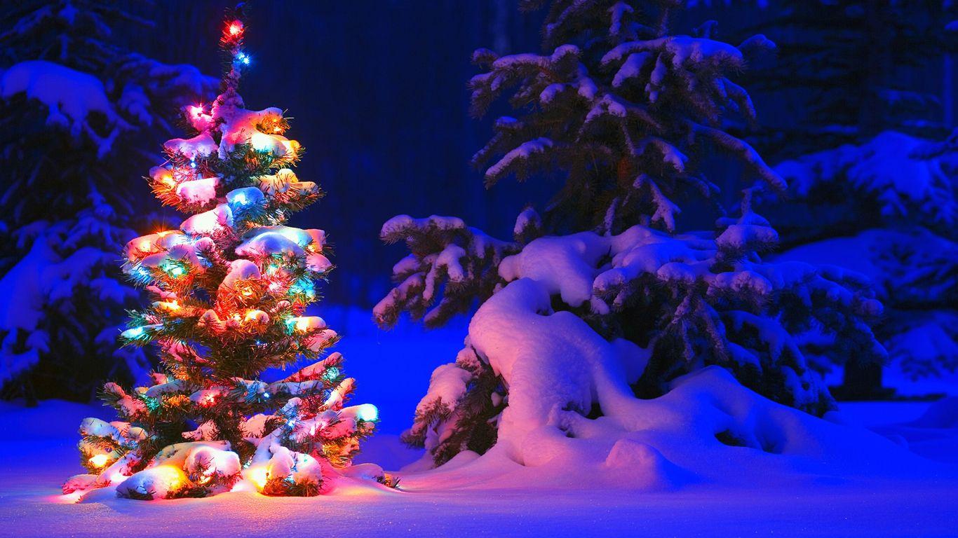 Wallpprs / Animated Christmas tree 1366x768 / 4k HD wallpaper ...