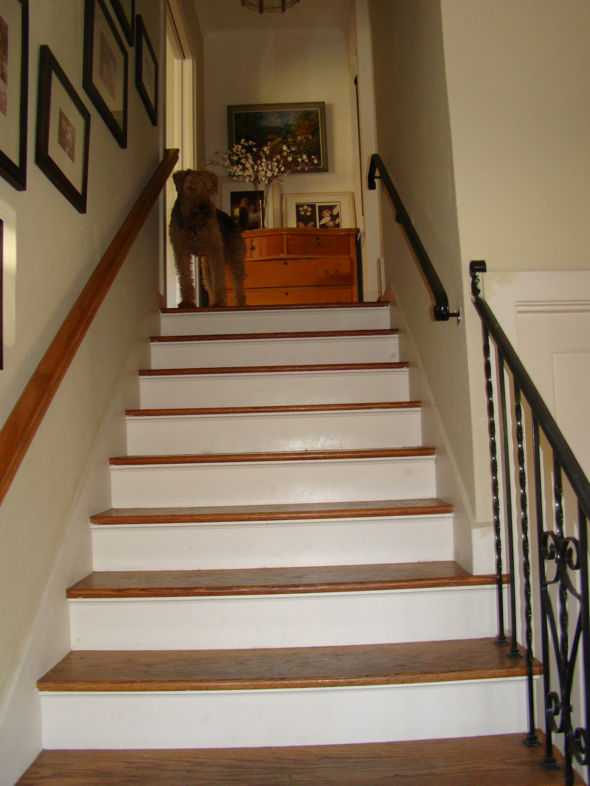 Wallpapered Stairs - WallpaperSafari on home bookcase design, home trim design, home balcony design, home steel design, home bridge design, home corridor design, home stage design, home interior design, home terrace design, home building design, home church design, home arches design, home pantry design, home wall design, home stairway design, home house design, home restaurant design, home modern design, home painting design, home column design,