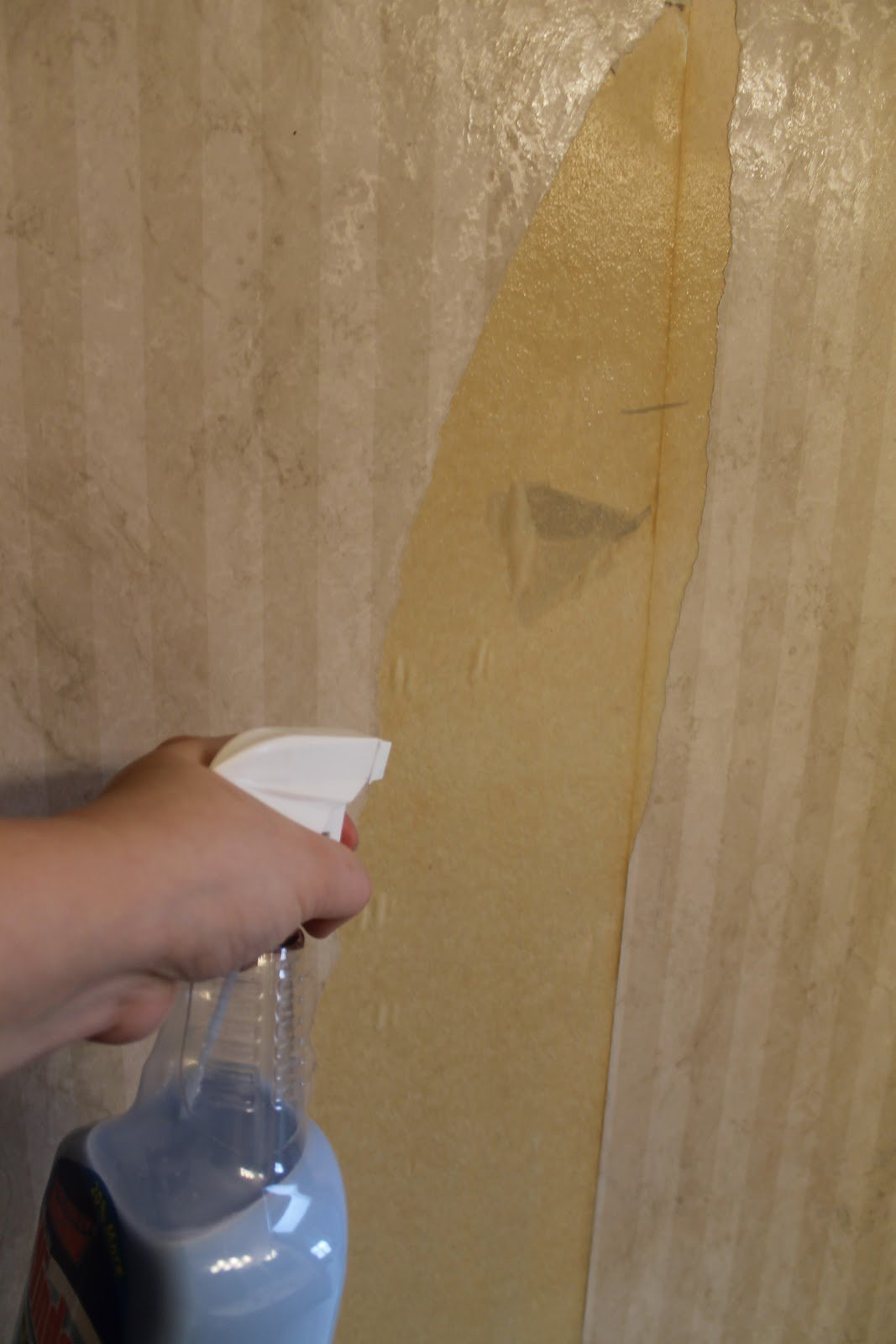 hip2thrift How to remove old wallpaper easily Bathroom Makeover 1067x1600