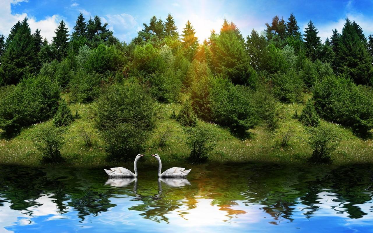1280 x 1080 wallpaper wallpapersafari - Wallpapers 1280x800 nature ...
