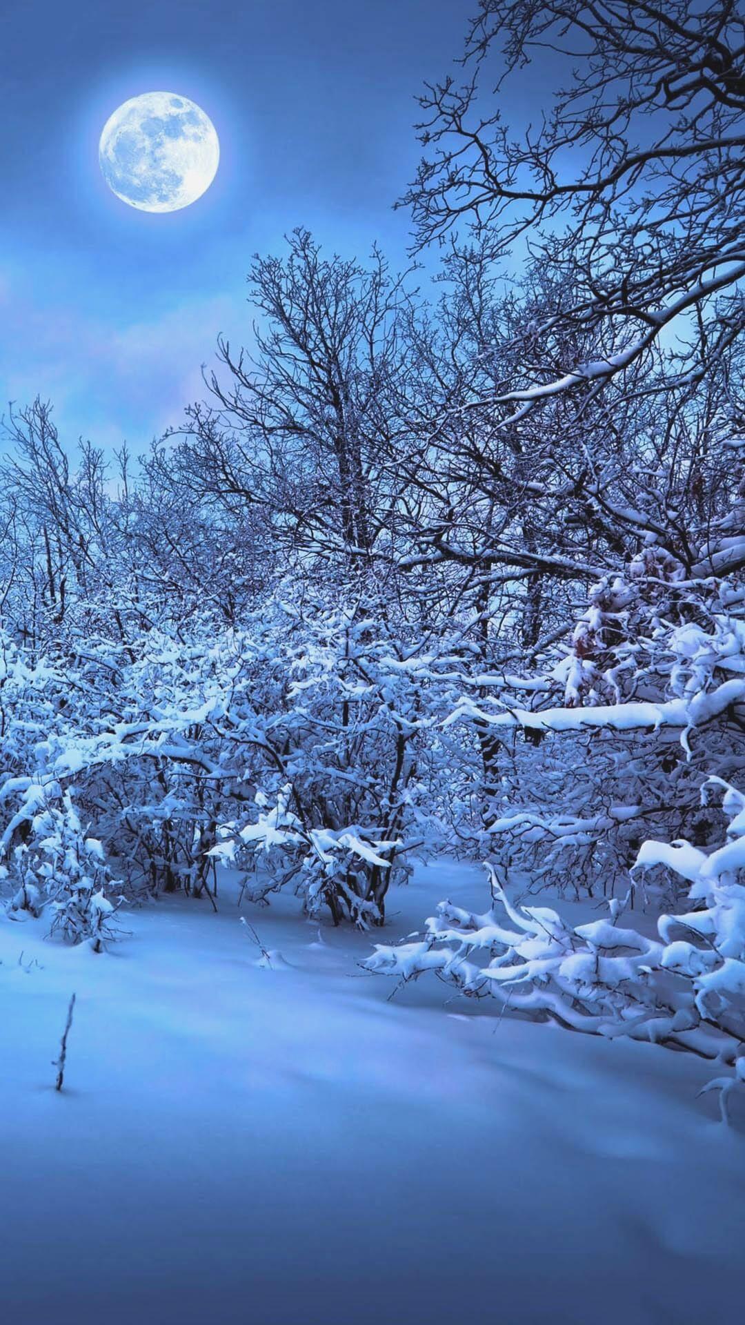 Winter Wallpaper For Iphone 6 Best Iphone Wallpaper Pictures 1080x1920