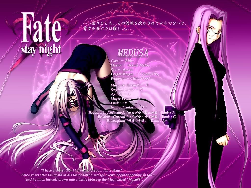 ridermedusa   Fate Stay Night Wallpaper 8266359 1024x768