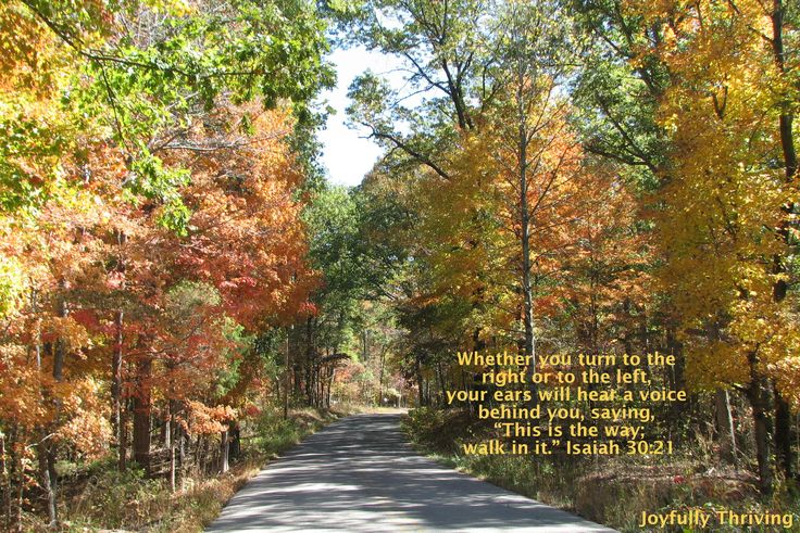 Fall Scripture Wallpaper Fall Hawaii   Download Autumn Photo 736x491