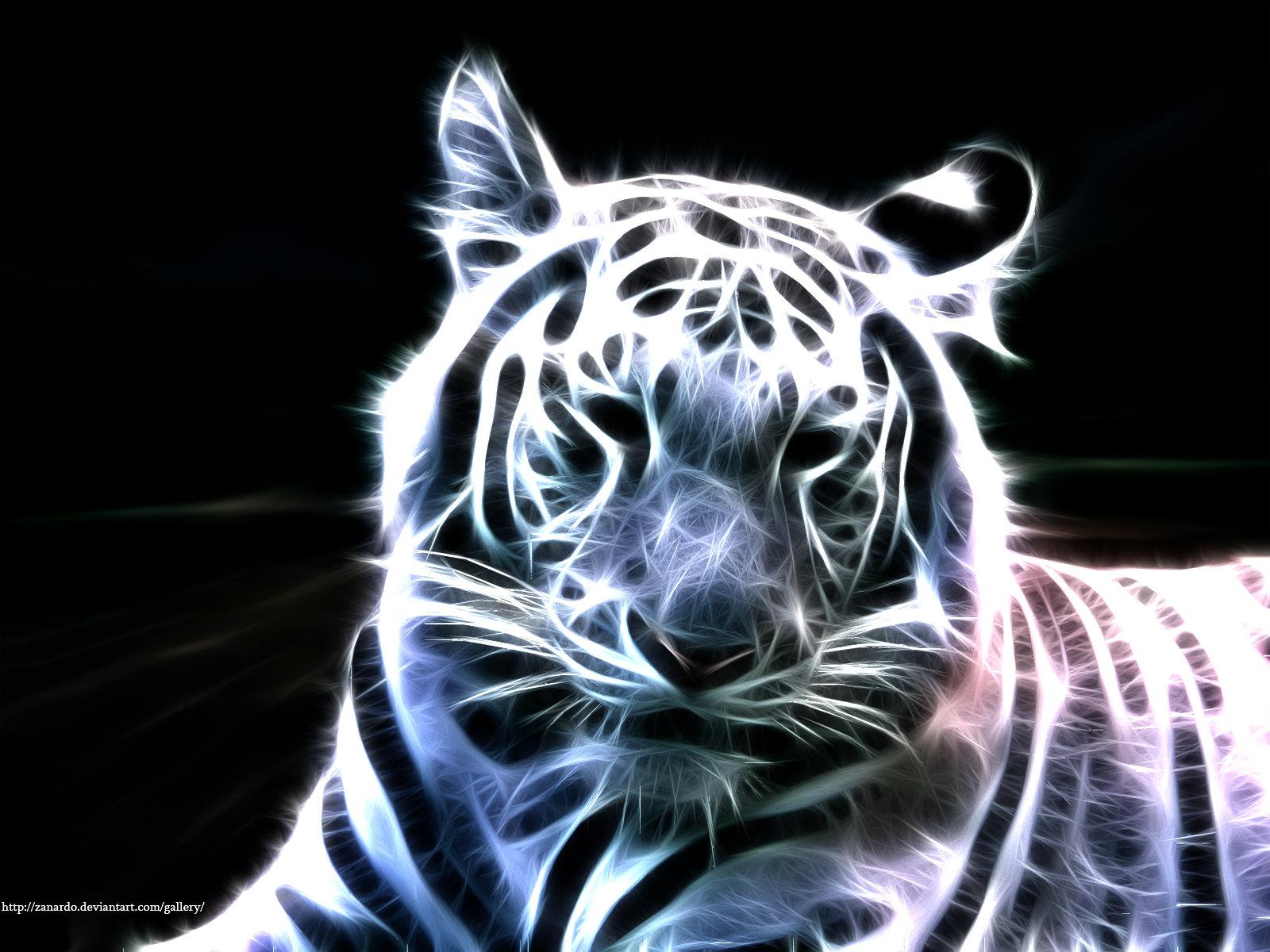 White Bengal Tiger by zanardo 1600x1200