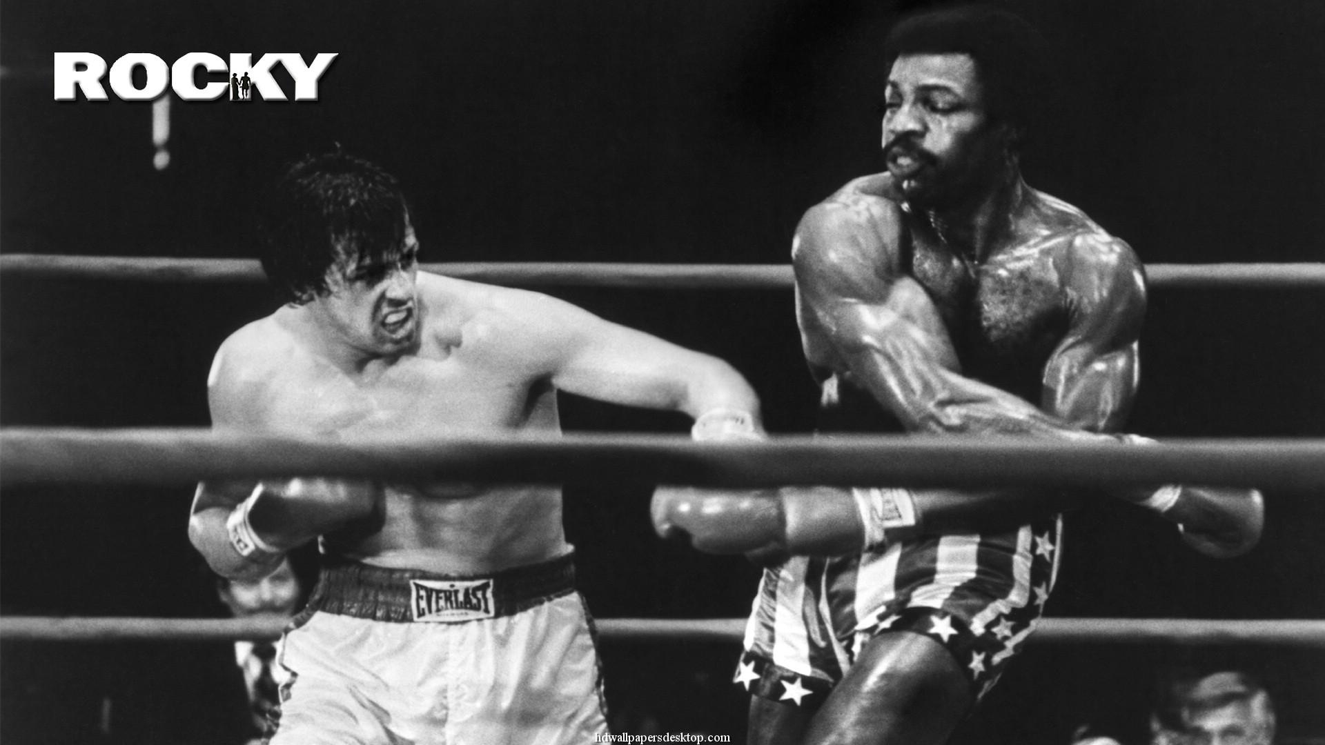 Rocky Wallpapers HD - WallpaperSafari