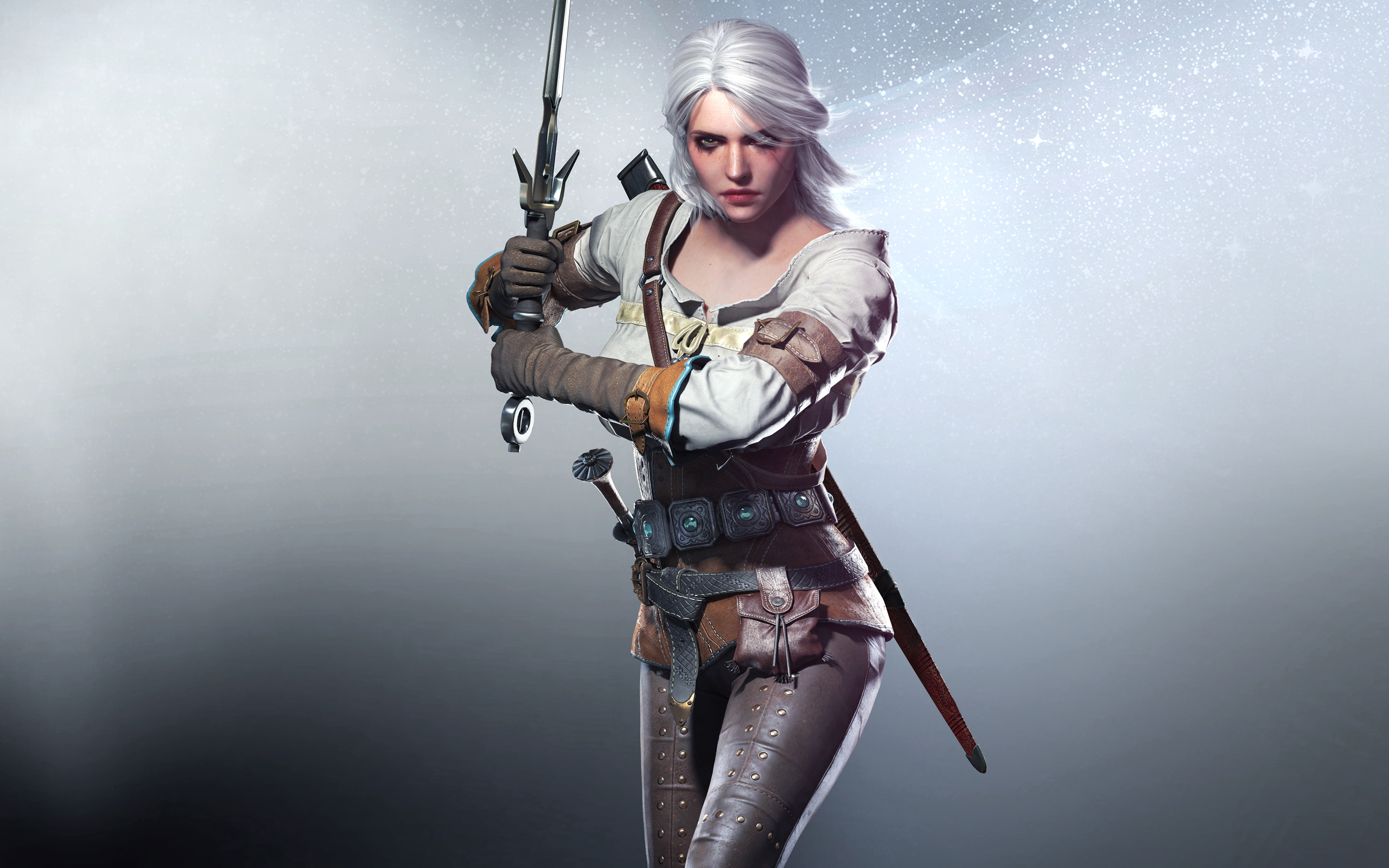 113 Ciri The Witcher HD Wallpapers Background Images 2560x1600