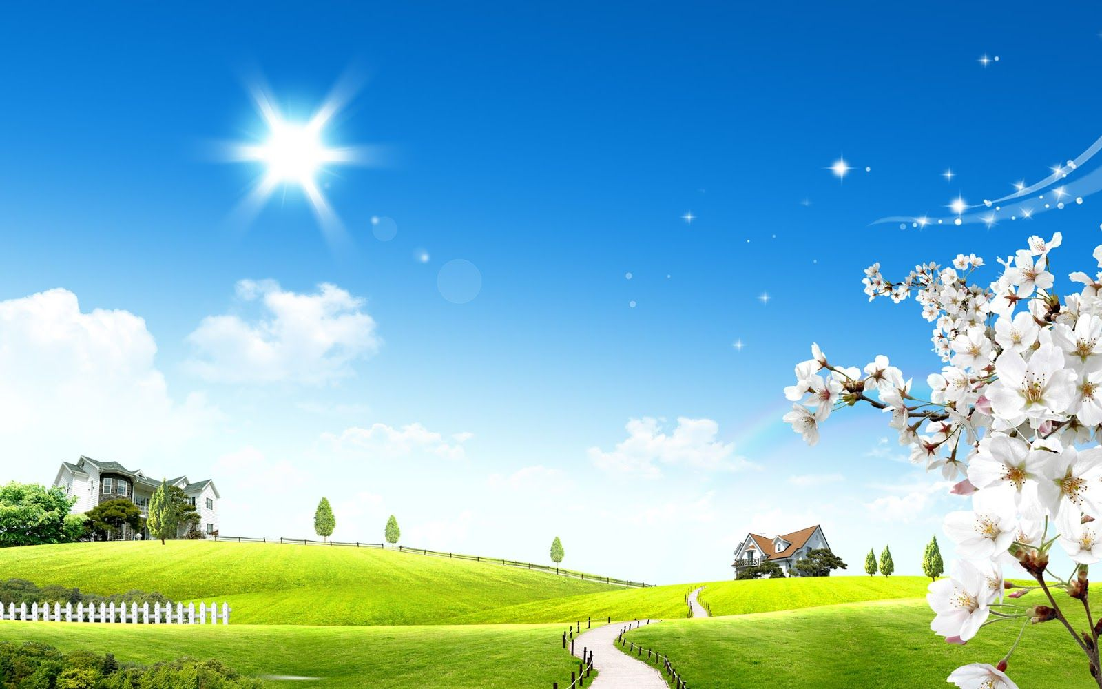 3D Meadow with a Lovely Sunny Day Beautiful wallpapers for 1600x1000