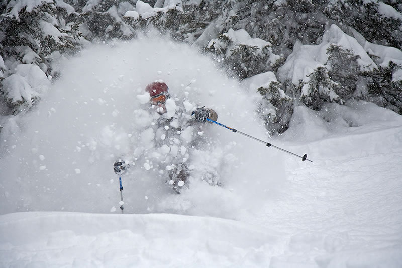 Powder Skiing Wallpaper 800x533