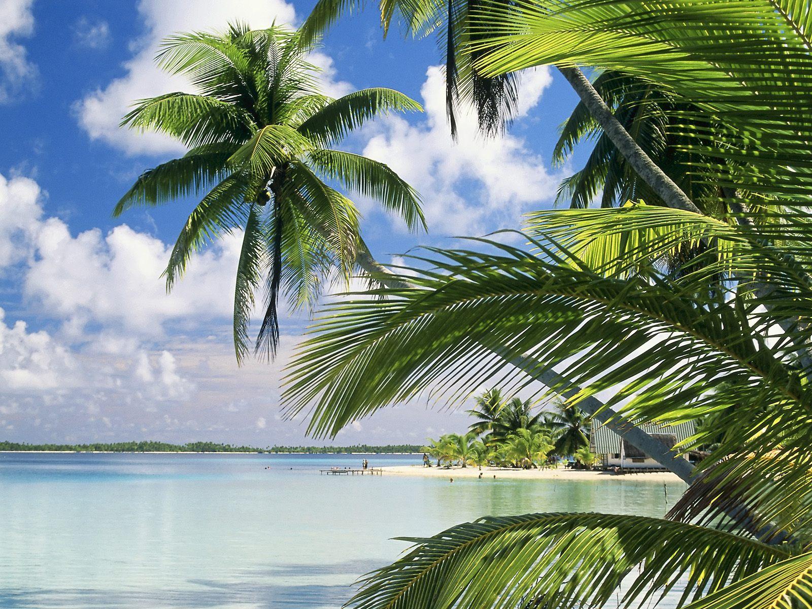 Florida beach 1600x1200 1600x1200