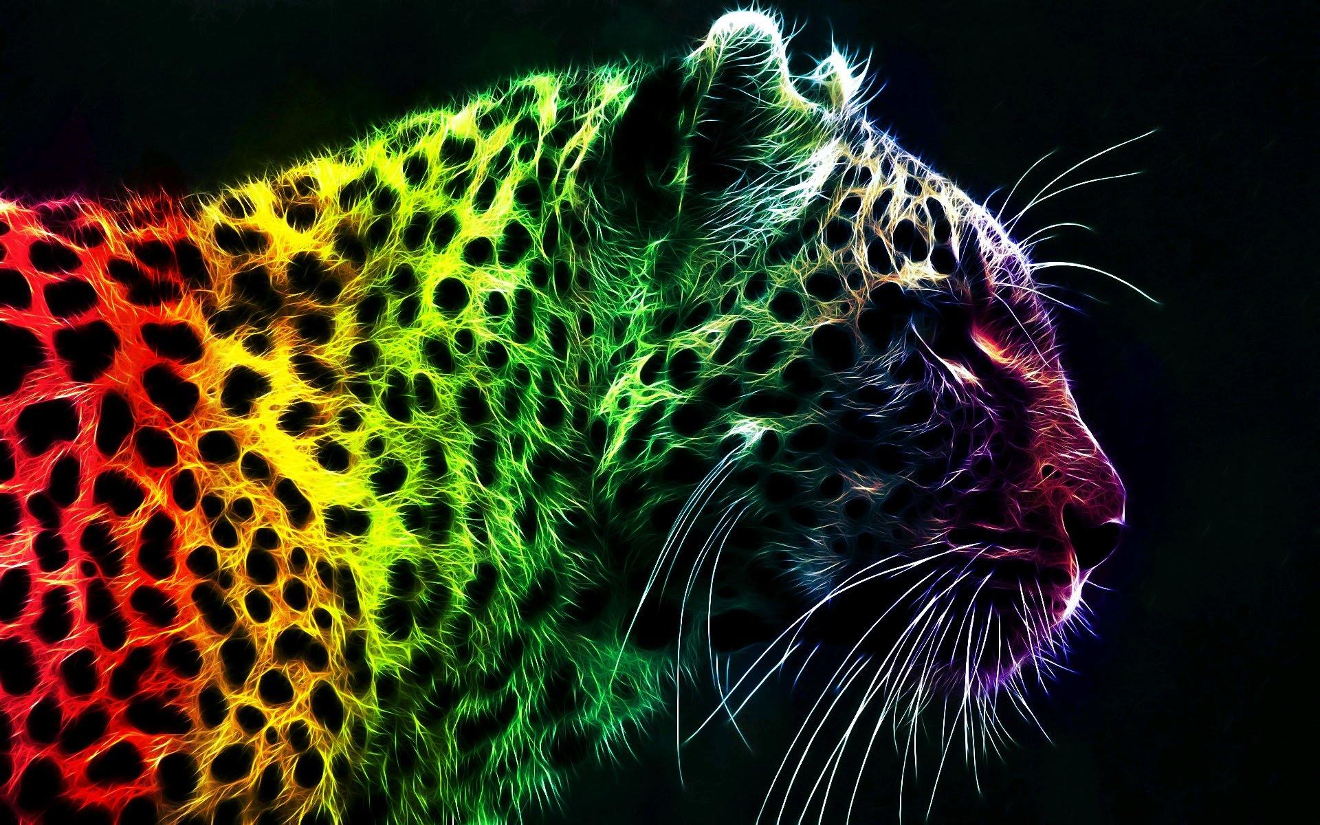 Neon animal wallpapers wallpapersafari - Animal black background wallpaper ...