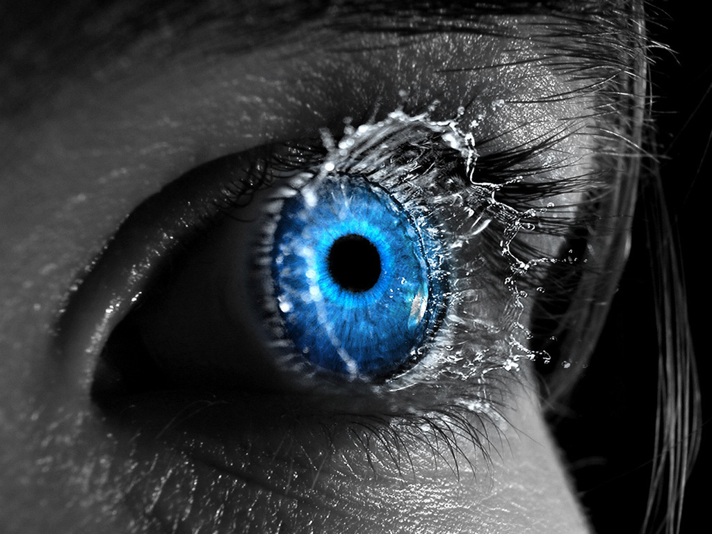 Blue eye   Eyes Wallpaper 8326072 1024x768