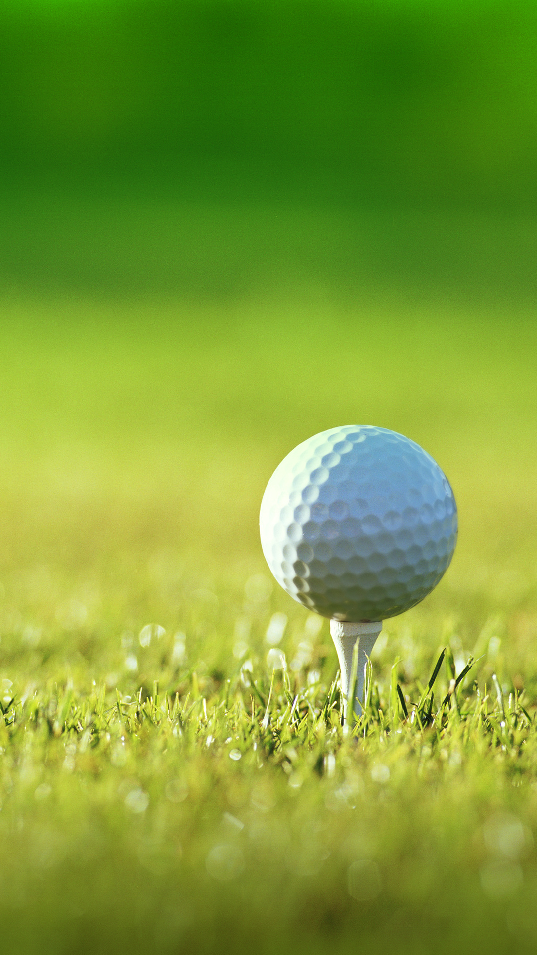 Free Download Wallpaper For Computer Golf For Lg Nexus Hd