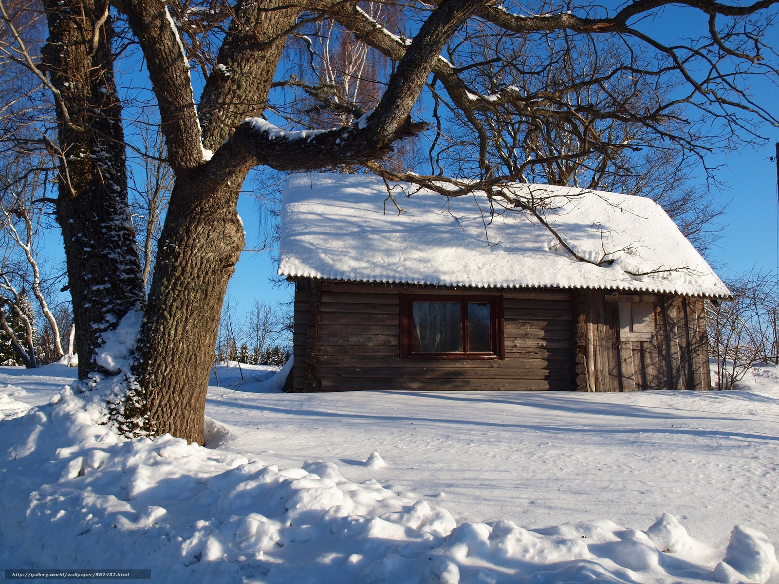 Download wallpaper winter snow tree cabin desktop wallpaper in 1600x1200