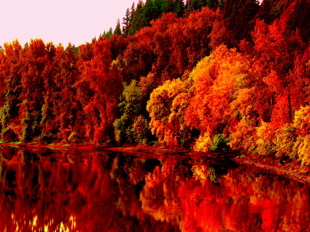 Autumn Lake One HD Wallpaper Pictures Backgrounds FREE Download 1024x768