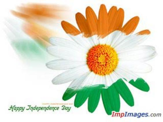 Indian Flag Wallpaper Happy Indian Independence Day Flower 564x423