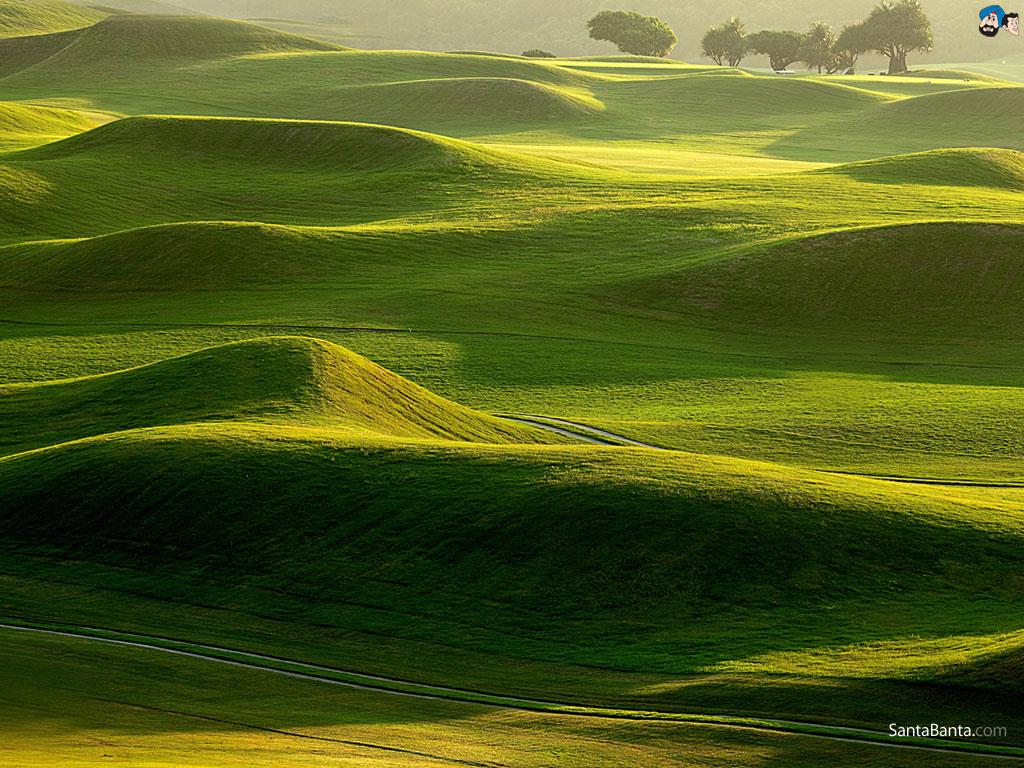Golf Course Wallpaper 40 1024x768