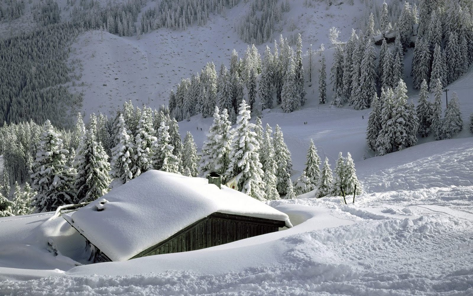 Wallpapers Box Snow Mountains In Winter HD Wallpapers 1600x1000