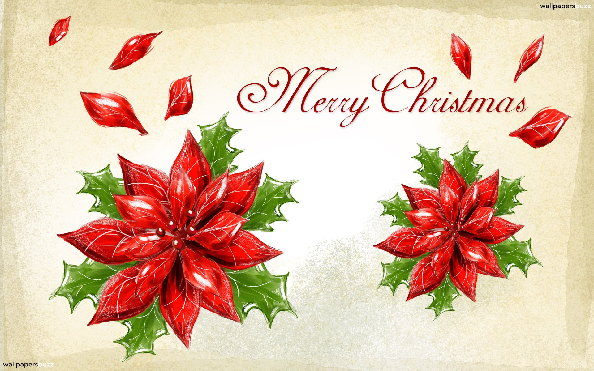 Free Download Merry Christmas Card Hd Wallpaper 1920x1200 For Your Desktop Mobile Tablet Explore 29 Christmas Cards Wallpapers Christmas Cards Wallpapers Christmas Cards And Gifts Wallpapers Cards Wallpaper