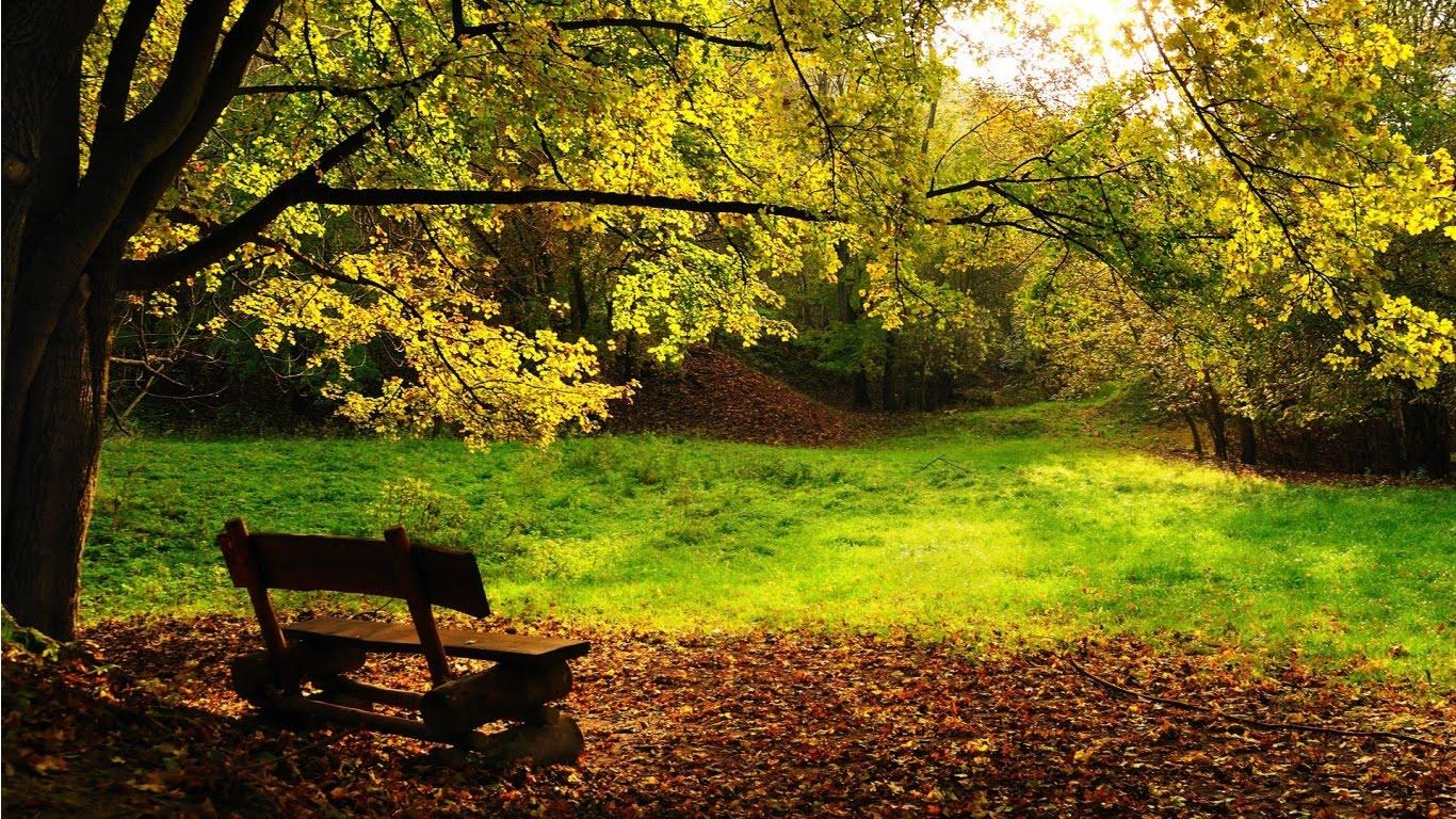 Wallpapers Blog autumn scene 1366x768