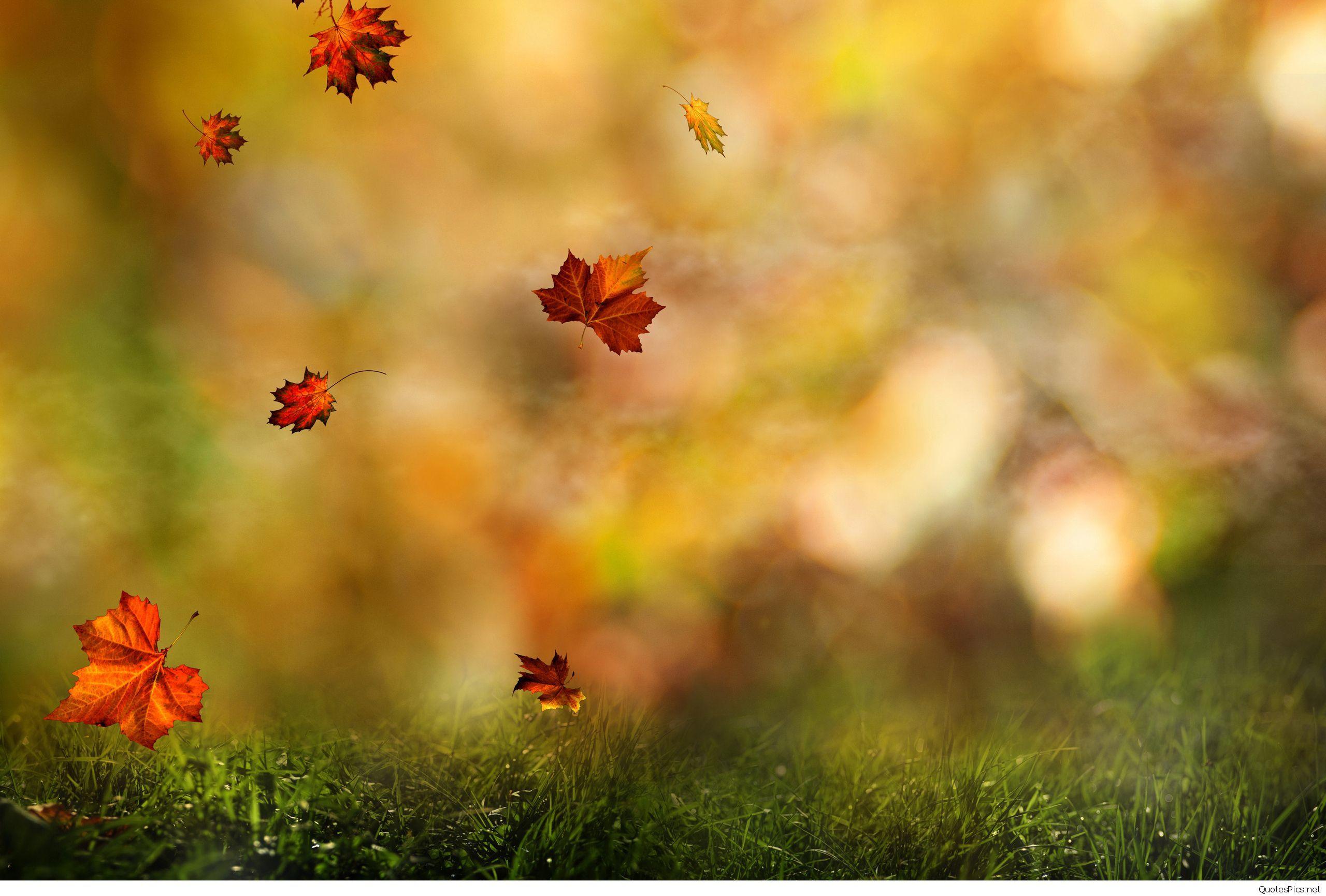 September Wallpapers   Top September Backgrounds 2560x1730