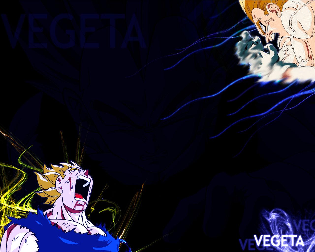 Vegeta wallpaper by fanatic19 1280x1024