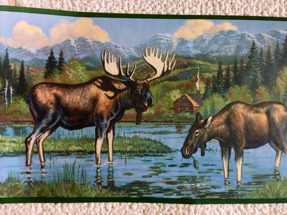 Rustic Lodge Cabin Moose Wallpaper Border eBay 1000x750