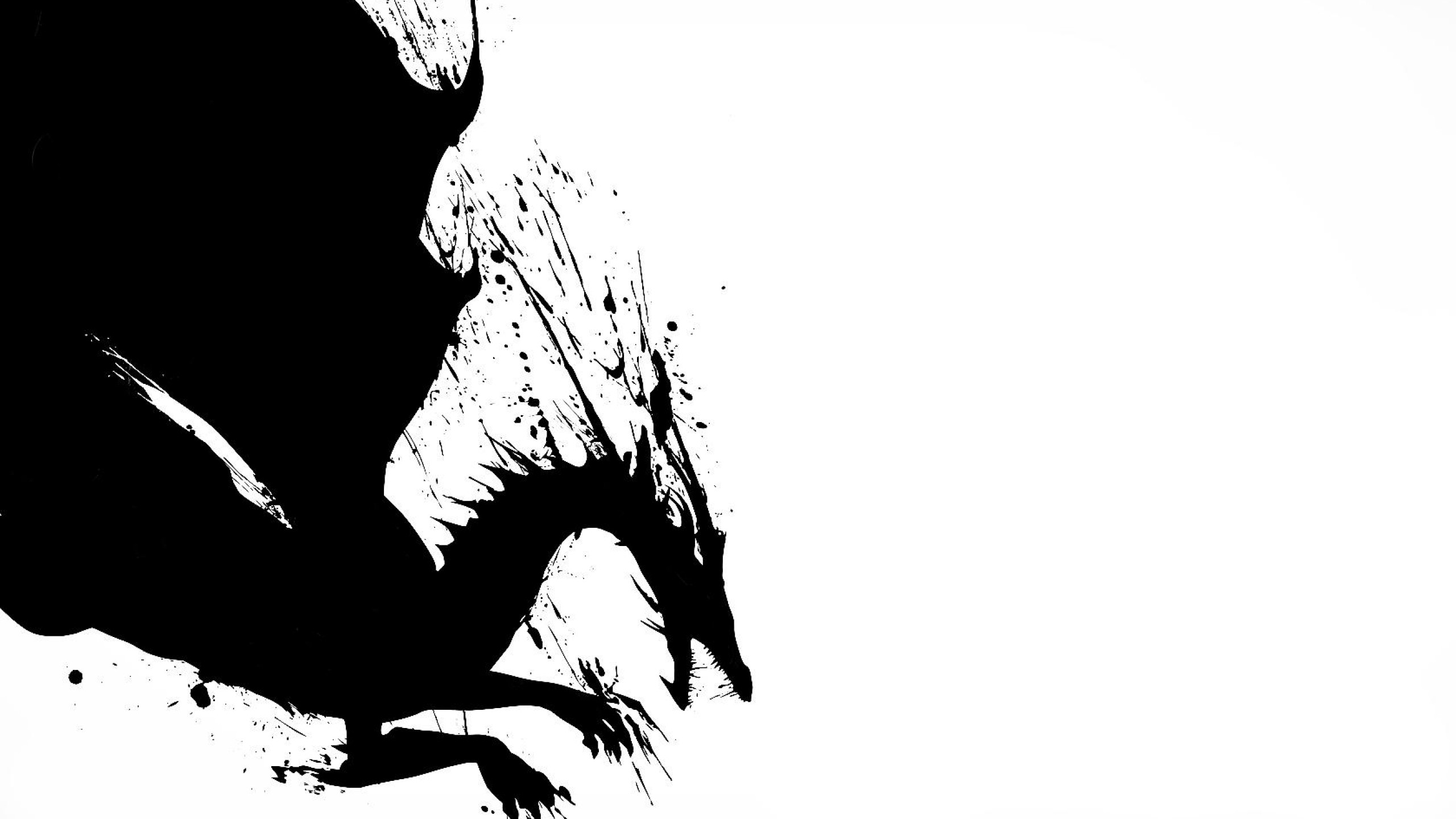 White And Black Dragons Wallpaper 2d Dragon Black White Black 2560x1440