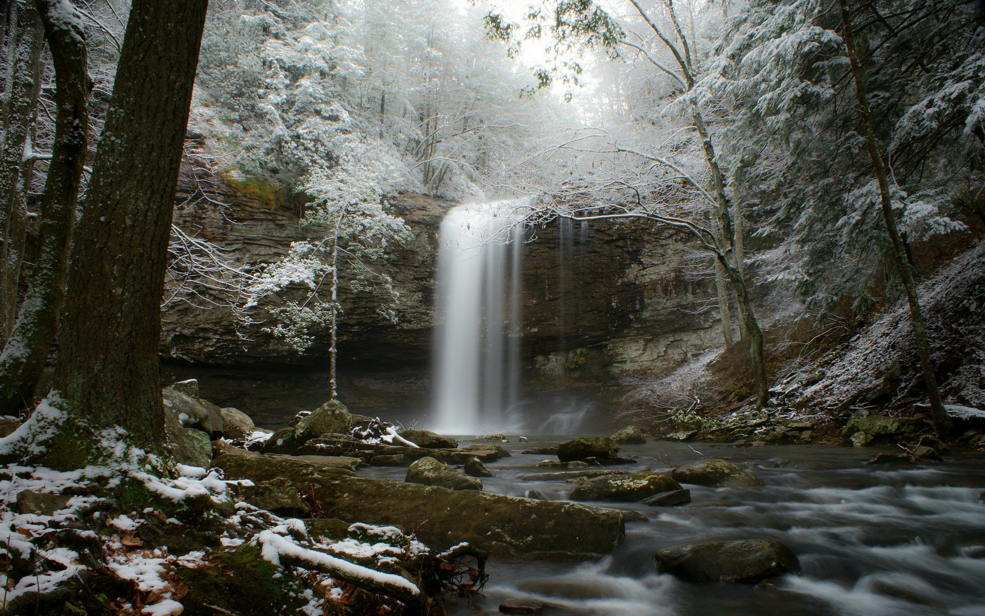 Stream snow forest river winter waterfall wallpaper 1920x1200 1920x1200