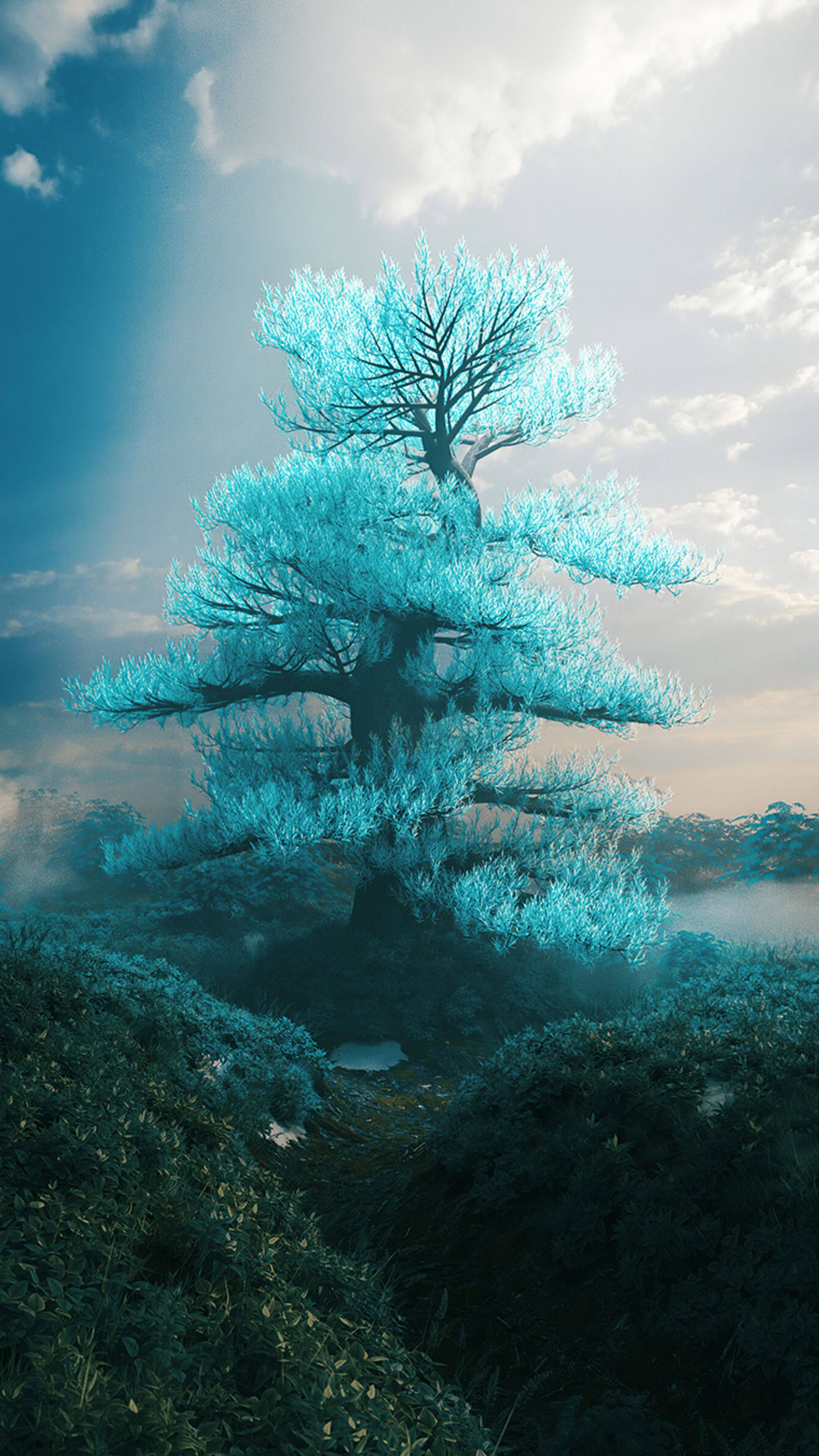 Peace Tree Wallpapers   Top Peace Tree Backgrounds 2160x3840