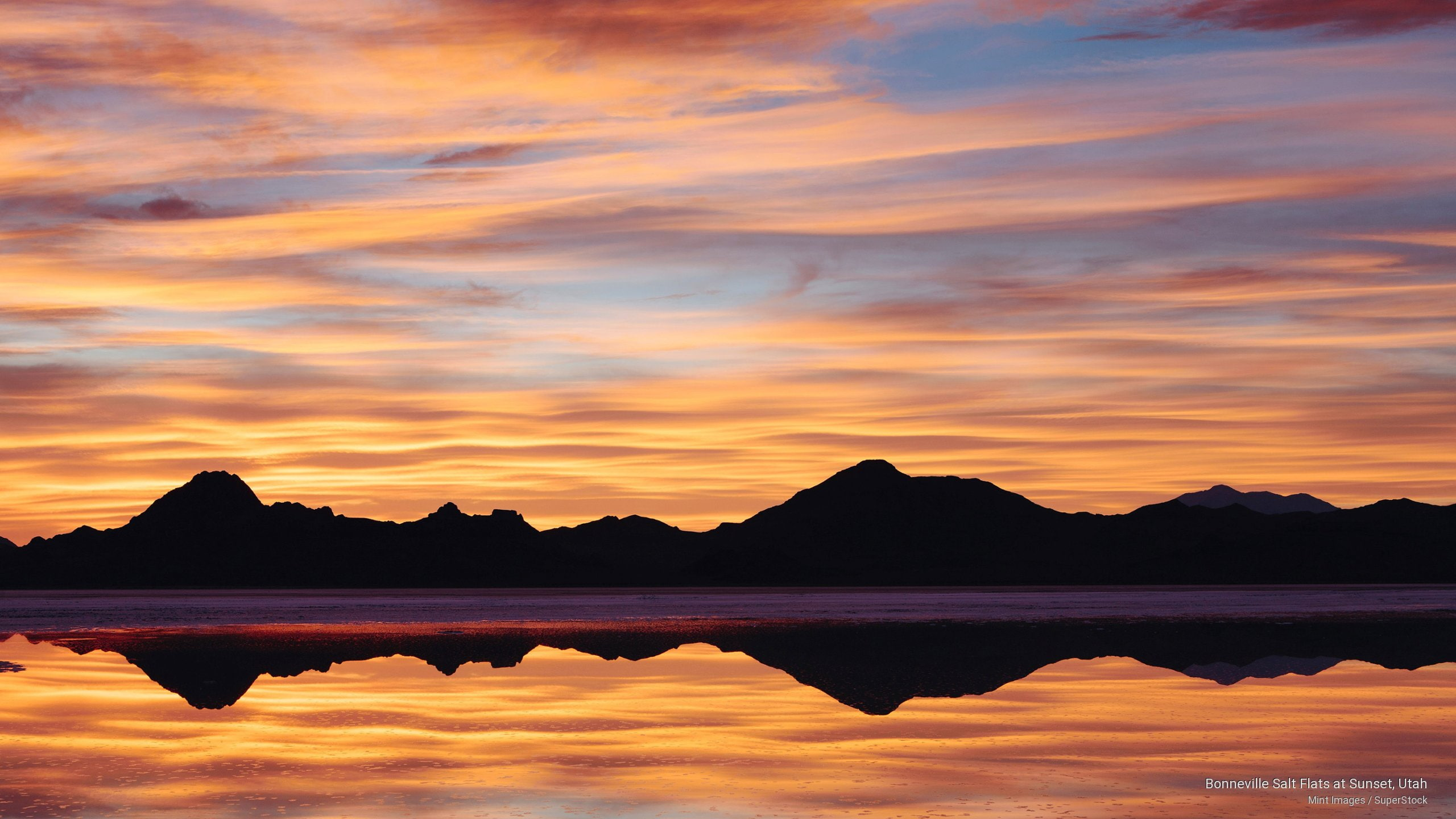 HD wallpaper Boniville Salt Flats Utah 440 Cuda entropy cars 2560x1440