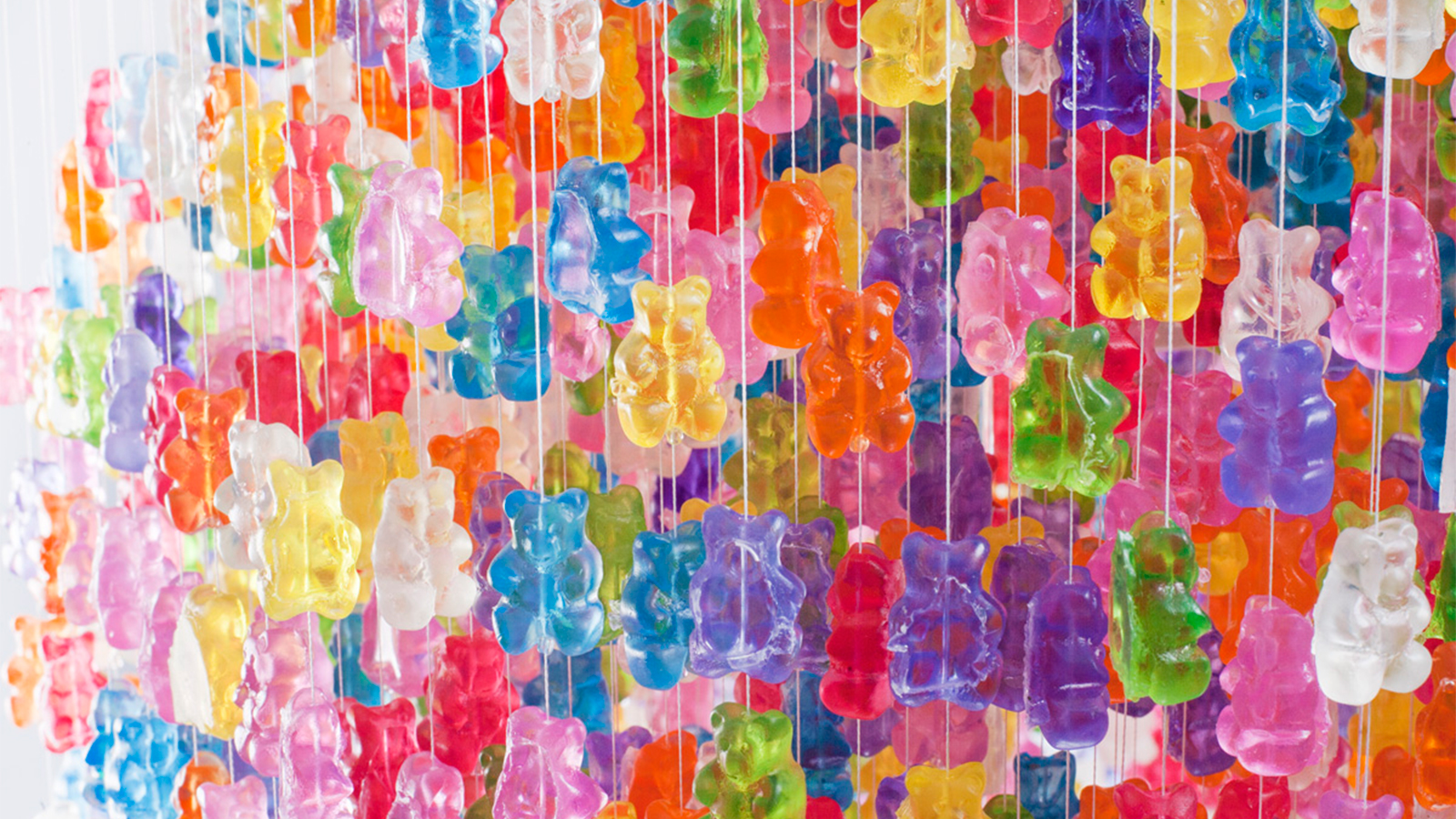 Free Download Pics Photos Gummy Bear Wallpapers 1600x900