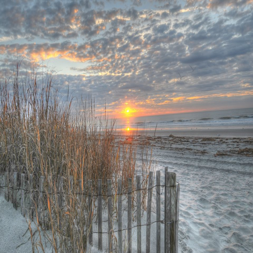 Free Download Myrtle Beach Wallpaper App Screenshot