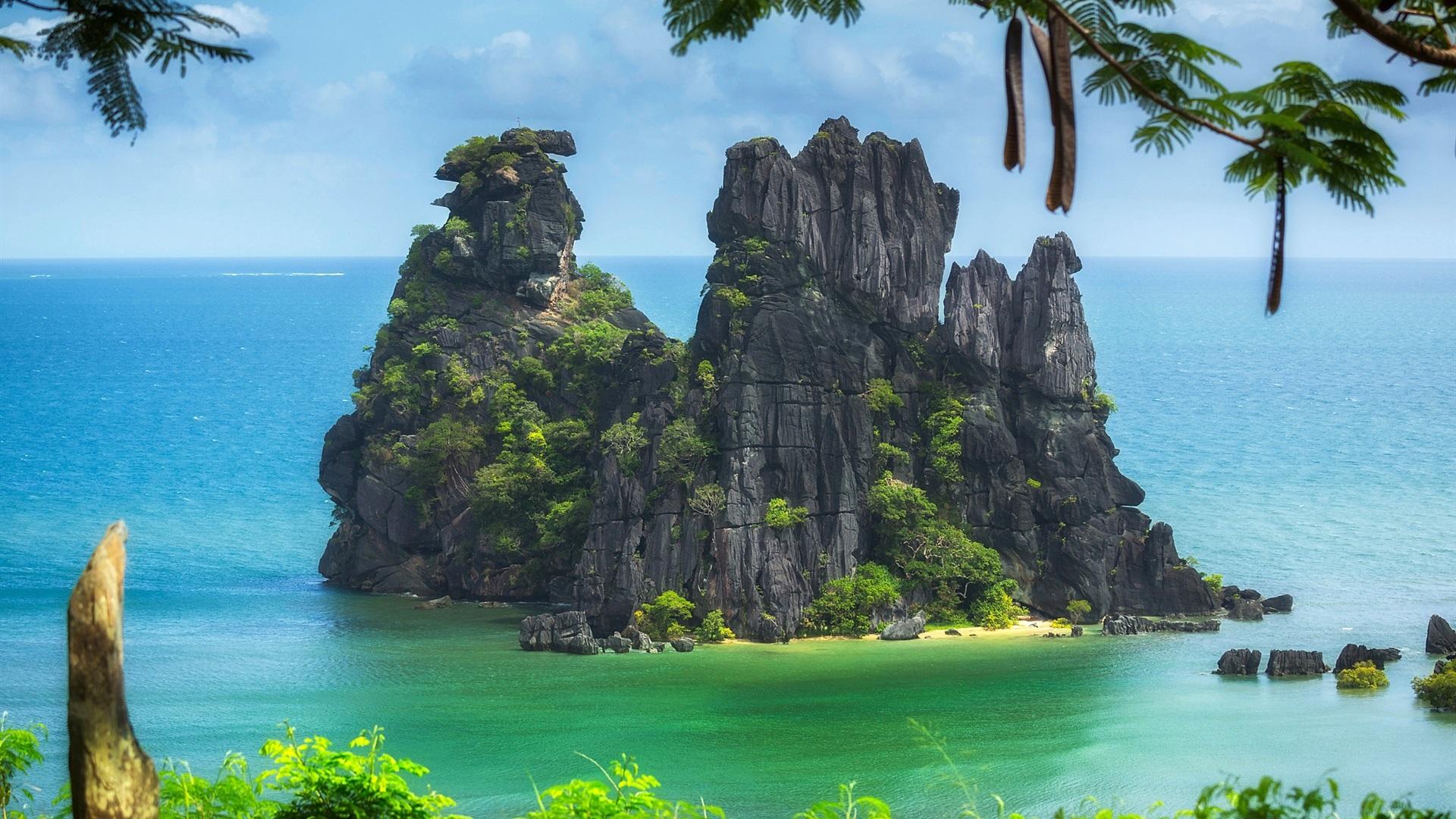 Wallpaper New Caledonia Pacific ocean island trees cliff 1920x1080
