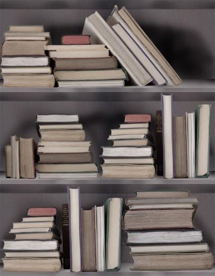 Bookshelf Wallpaper The Office Stylist 422x542