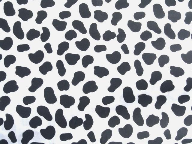 Dalmatian Dog Invitat 640x480