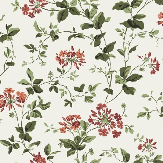 Green and Coral Floral Wallpaper Plumbago Wallpaper 534x534